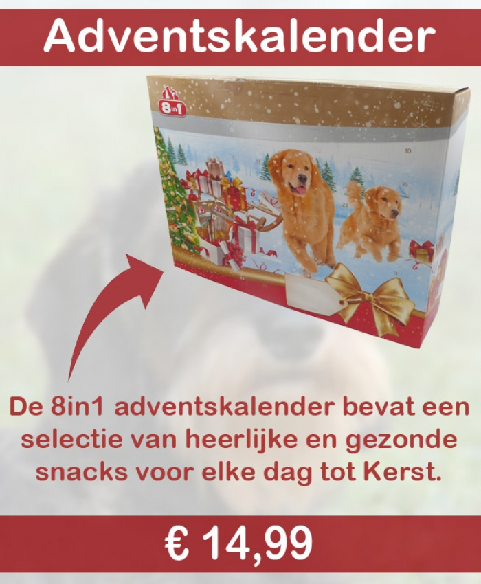 8in1 Adventskalender